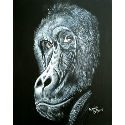 Bill le chimpanzé