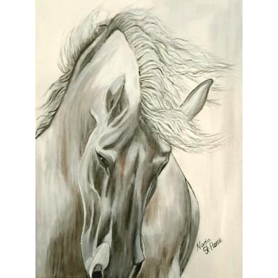 Sultan le cheval